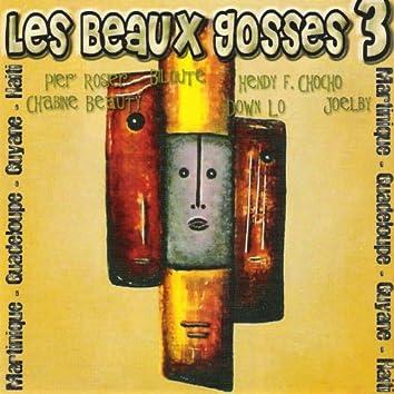 Les Beaux Gosses, vol. 3