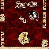NCAA Florida State Seminoles Fleece Digital, Fabric by the Yard