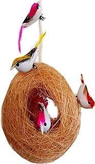 LIVEONCE Set of 1 Decoration Bird NEST -(6 Birds)-Multicolor