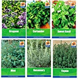 HERB COLLECTION 4- selection of 6 Fresh Herb Seeds Oregano, Coriander,...