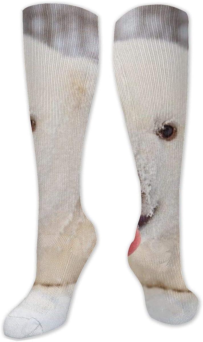 Cute Littlepolar Bear Knee High Socks Leg Warmer Dresses Long Boot Stockings For Womens Cosplay Daily Wear
