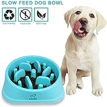 Decyam Comedero de Perros para ralentizar la Comida, Divertida búsqueda de alimento