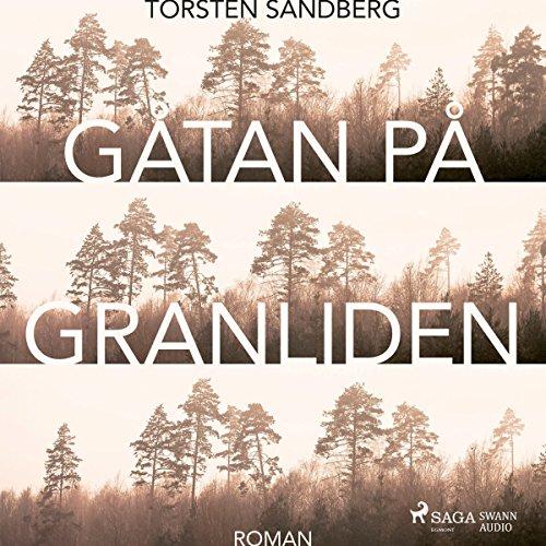 Gåtan på Granliden Titelbild