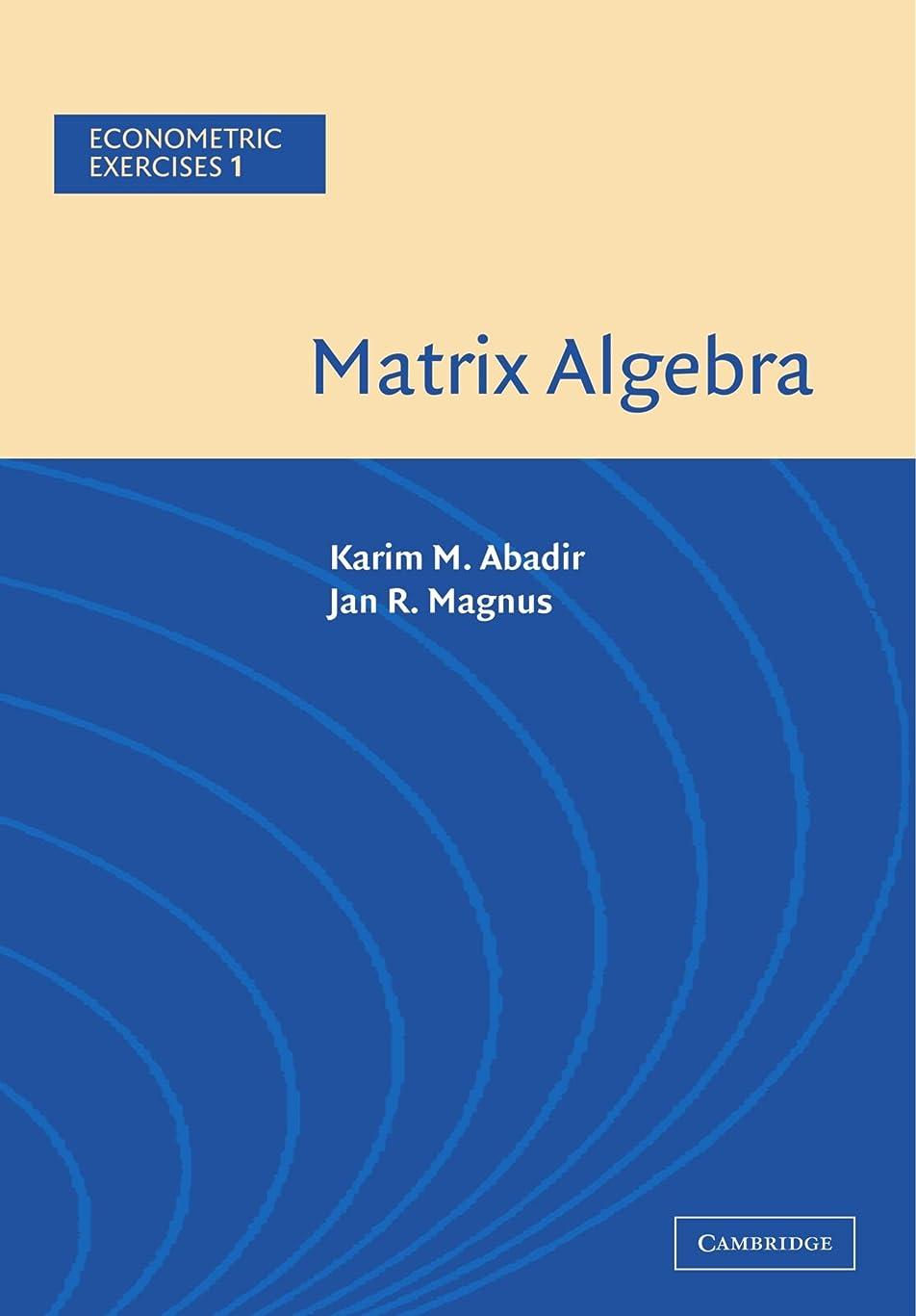 経済コメント好ましいMatrix Algebra (Econometric Exercises)