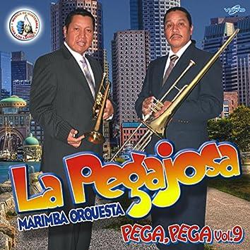 Pega, Pega Vol. 9. Música de Guatemala para los Latinos