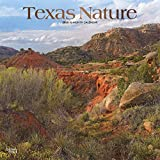 Texas Nature 2020 12 x 12 Inch Monthly Square Wall Calendar with Foil Stamped Cover, USA United States of America Southwest State Wilderness (English, Spanish and French Edition)