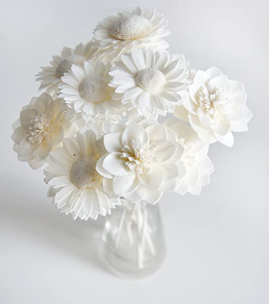 Plawanature Set Of 10 Mixed Dahlia And White Daisy Sola Flower With Reed Diffuser Replacement For Home Fragrance