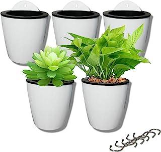 5 Pack Lazy Flower pots Water Hanging Plants Pot/Self Watering Planter,Succulent Plants and Small Flower pots Plants Pots ...