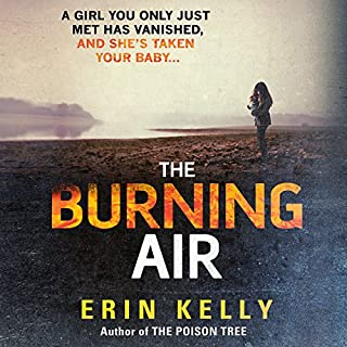 Couverture de The Burning Air