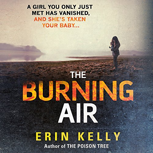 The Burning Air cover art