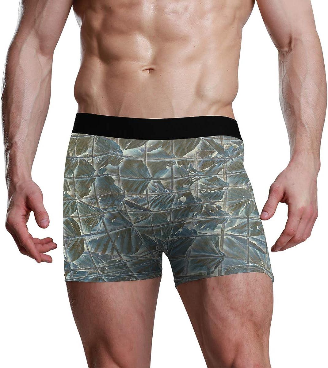 HangWang Men's Boxer Briefs Abstract Dry Leaves Eye-Opening Bikini Underwear Stretch Trunks Boys Underpants