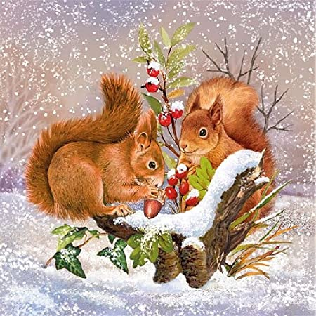 Christmas 20 napkins with squirrel and bird in winter design 33/x 33/cm winter animals