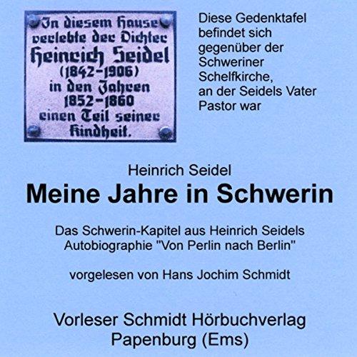 Meine Jahre in Schwerin cover art