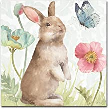 Spring Softies Bunnies II by Lisa Audit, 24x24-Inch Canvas Wall Art