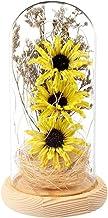 1pc praktische chique creatieve led plant li