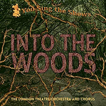 You Sing the Shows: Into the Woods (Karaoke Versions)