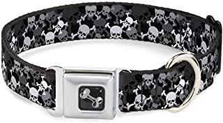 Dog Collar Seatbelt Buckle Top Skulls Stacked Black Gray White 11 to 17 Inches 1.0 Inch Wide