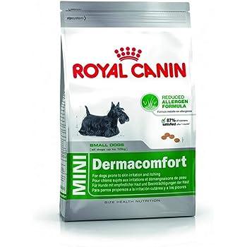 Royal Canin Mini Derma Comfort Dog Food 10 Kg Amazon Co Uk Pet Supplies