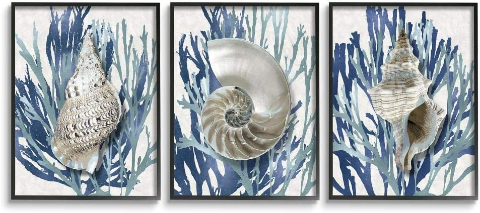 Stupell Industries Trio of Shell 当店限定販売 Coral Beach Blue ショッピング Design