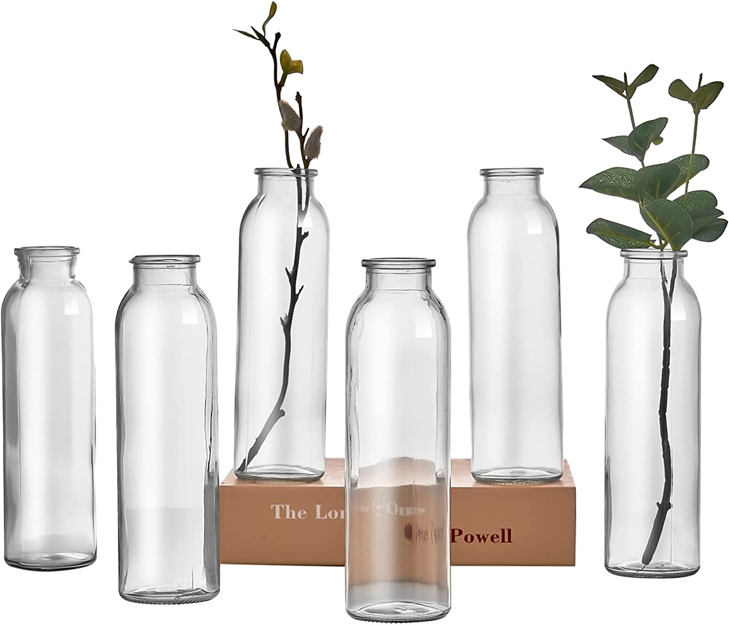 RESYOTE Bud Vase Set of 6, Decorative Glass Bottles, Apothecary Jars Bud Vase for Home Decor Wedding Reception(Tall Clear)