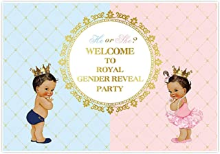 Allenjoy 6x4ft Royal Gender Reveal Theme Party Backdrop He Or She Princess Prince Boy Girl Birthday Baby Shower for Event Decorations Newborn Portrait Photography Pictures Pink Blue Cake Table