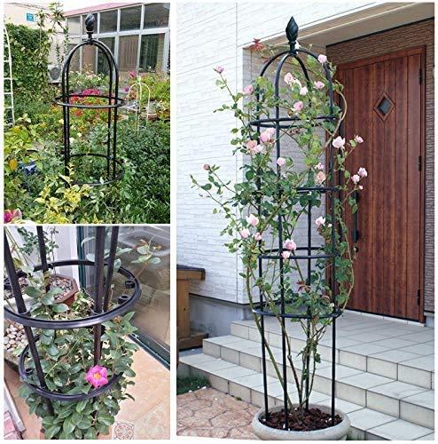 LHLYL-DP Enrejado para Plantas trepadoras, Enrejado de Jaula de Tomate, Soporte de Flores Creativas para Plantas en macetas, Soporte de Escalada Interior de Hierro Forjado