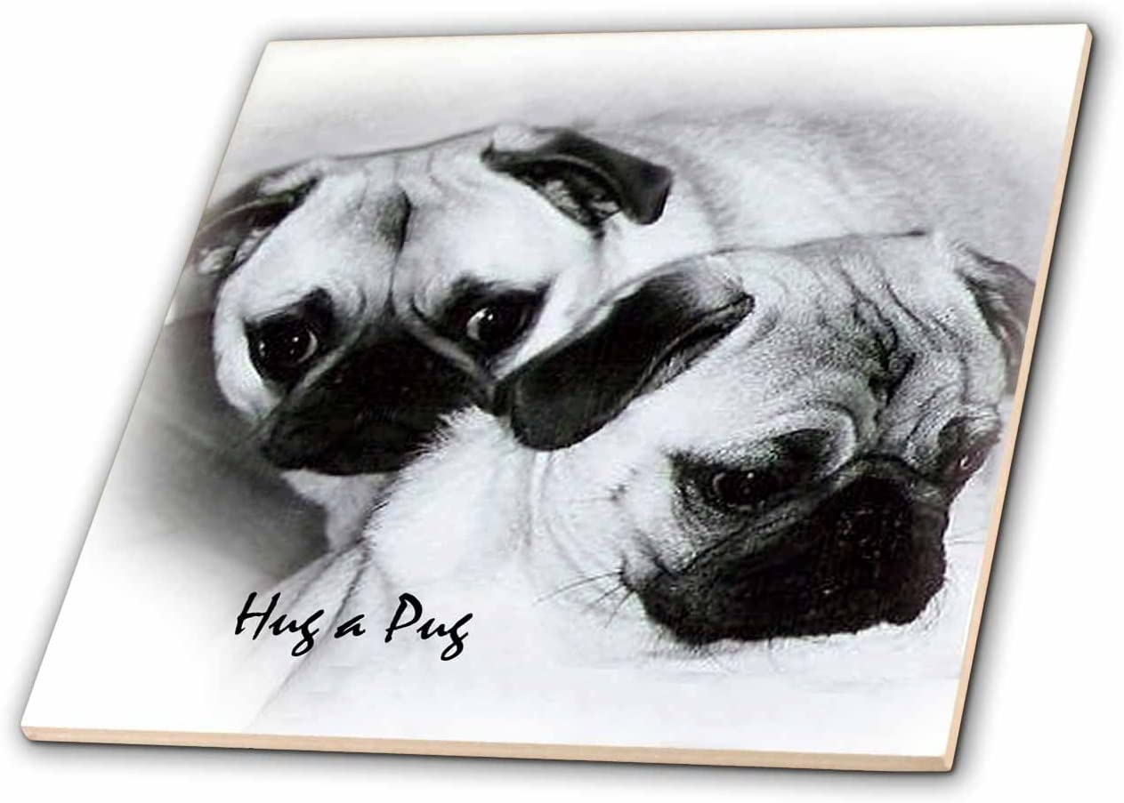 3dRose ct_1232_4 Hug a Pug 12-Inch 40% OFF Cheap Sale Puppies Ceramic Max 43% OFF Tile