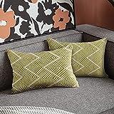 Fundas de Cojín, Funda de Almohada Lino de algodón Decorativa Geometría Moderna con Cremallera Invisible Funda de Cojín 30x50cm, Juego de 2 Funda de Cojines para Sala de Estar Sofás (Amarillo)