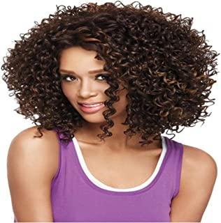 mixfeer Short Hair Afro Wigs for Black Women Short Curly Afro Wigs Natural & Soft High Temperature Fiber Hair Styling Acce...