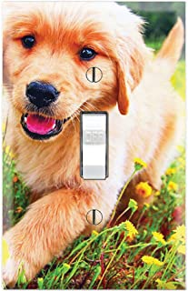 Graphics Wallplates - Golden Retriever Puppy Flower Garden - Single Toggle Wall Plate Cover