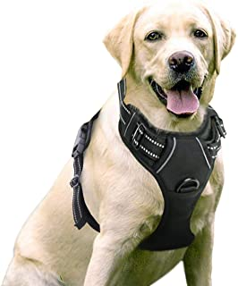 Rabbitgoo Front Range Dog Harness Adjustable Outdoor Pet Vest with Handle Easy Control for Small Medium Large Dogs and Durable Material (Large, Black)