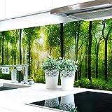 Küchenrückwand Waldlichtung Premium Hart-PVC 0,4 mm selbstklebend 220x51cm -