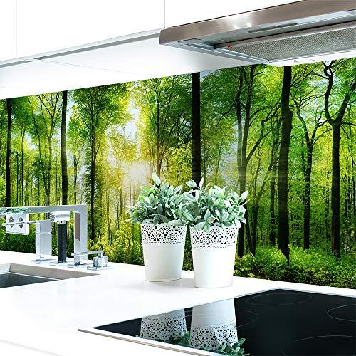 Küchenrückwand Waldlichtung Premium Hart-PVC 0,4 mm selbstklebend 60x51cm