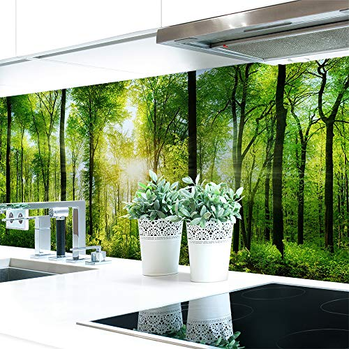 Küchenrückwand Waldlichtung Premium Hart-PVC 0,4 mm selbstklebend 220x51cm