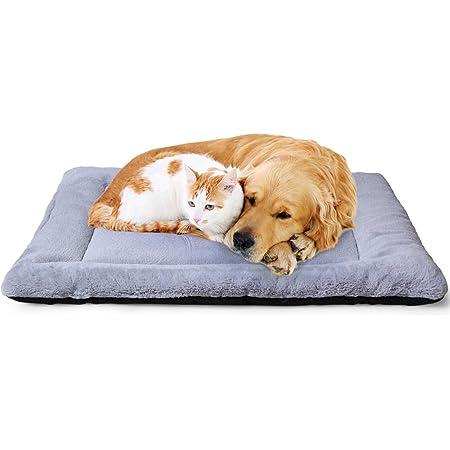 ZHAOJUCAI Im Not Yelling Im Armenian Pet Bed Cushion Soft Dog//Cat Bed Crate Pad Mat Washable Anti-Slip Mattress for Sleeping