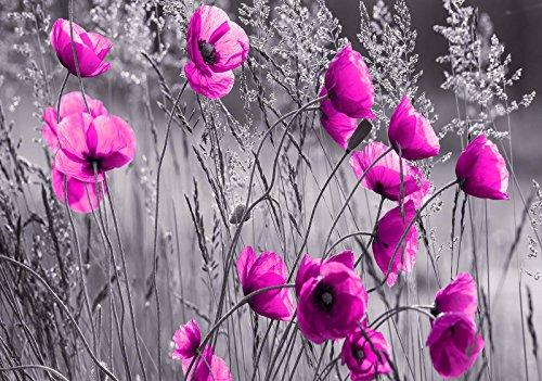 Mural 11764_P-MS, fotobehang, behang, muurschildering wereld-der dromen | klaprozen | fotobehang, muur, 11764_P-MS, veld weide, bloem, klaprolen, natuur, fotobehang P8 (368cm. x 254cm.) roze, grijs, wit