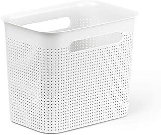 Rotho Brisen Boîte de Rangement Étroite de 7L avec 2 Poignées, Plastique (PP) sans BPA, Blanc, 7L (26,2 X 18,0 X 21,1 cm)