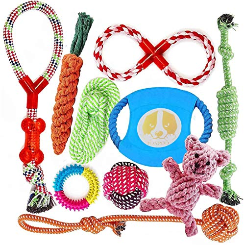 Dog Toys for Aggressive Chewers Indestructible Dog Rope Toys for Small to Medium Dog Rope Chew Toys for Puppies Dog Safe and Healthy Gift Set 10 Pack