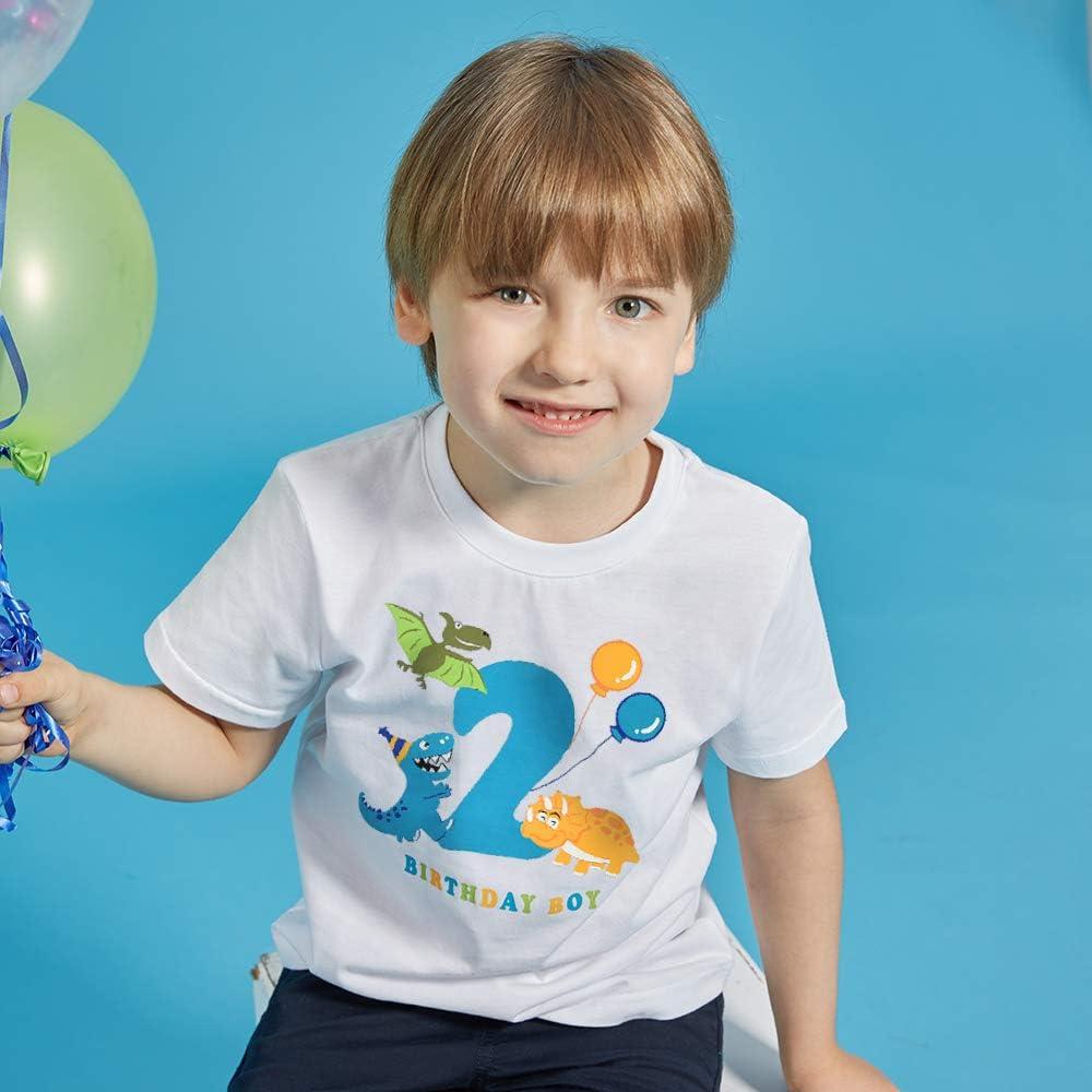 AMZTM Dinosaur 2nd Birthday Shirt Boy 2 Year Old Toddler Dino B-Day Party Tee