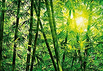 Ideal Décor DM123 Bamboo Forest Wall Mural White 8 Piece