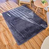 GaoTuo Alfombras Suaves de Terciopelo, alfombras Modernas y esponjosas, Lindas alfombras de Dormitorio peludas, adecuadas para su Uso como alfombras de Dormitorio(Gris,120x160cm)