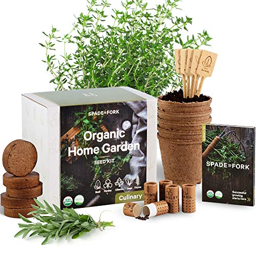 Indoor Herb Garden Starter Kit - Certified USDA Organic Non GMO - 5 Herb Seed Basil, Cilantro, Parsley, Sage, Thyme, Potting Soil, Peat Pots - DIY Kitchen Grow Kit for Growing Herb Seeds Indoors