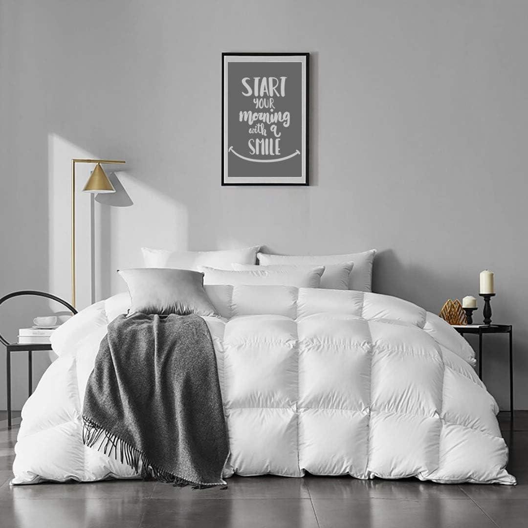 half APSMILE Lightweight Down Bombing new work Comforter Queen Organic - Cot Size 100%