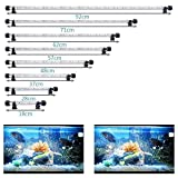 SolarNovo LED Éclairage Aquarium Lampe Tube Étanche Lighting Plongée A Economie D'energie Fish Tank Décoration RGB Couleur...