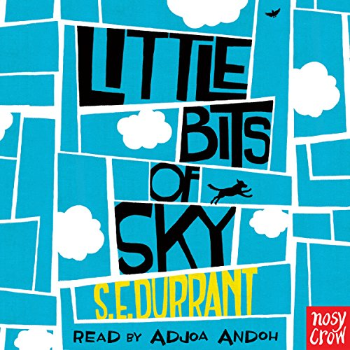Little Bits of Sky cover art