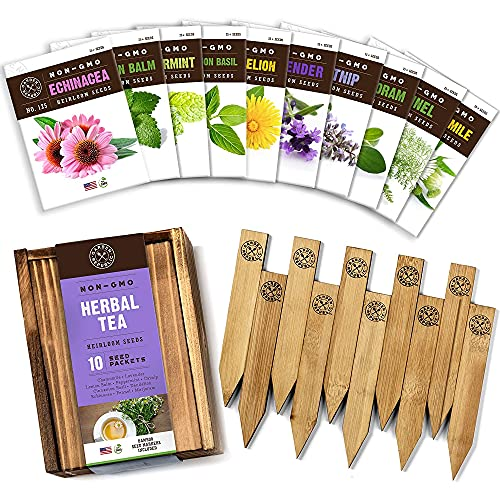 Herb Garden Seeds for Planting - 10 Medicinal Herbs Seed Packets Non GMO, Wood...