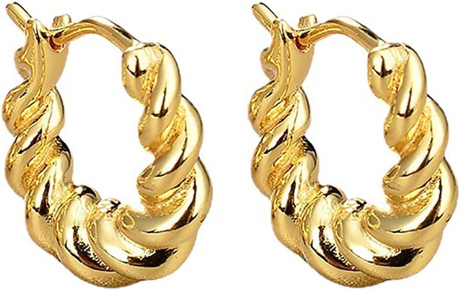 COSYOO Hoop Earrings Metal Twisted Decorative Dainty Unique Elegant Jewelry Earrings for Girls Unique Decorative Dainty Clip