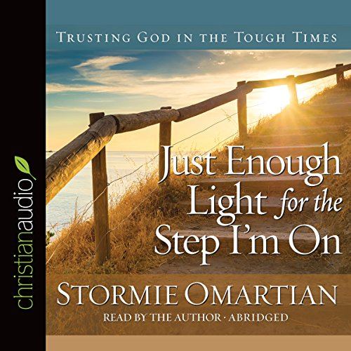 Just Enough Light for the Step I'm On audiobook cover art