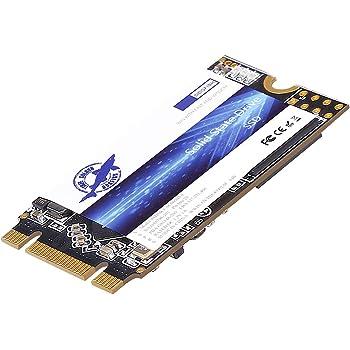 Dogfish SSD M.2 2242 480GB Discos Duros sólidos Laptop Hard Drive ...