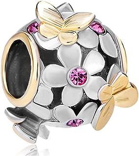 Best what charms fit pandora bracelets Reviews